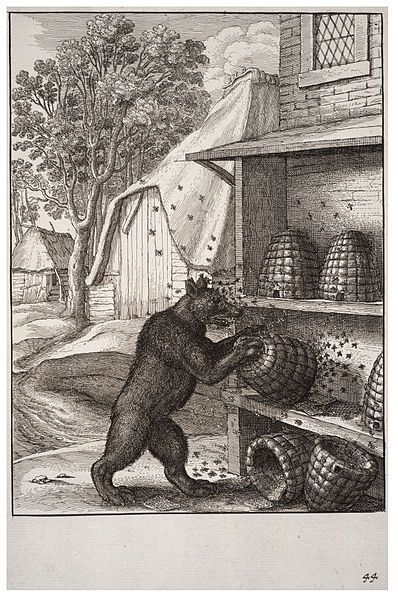 Wenzel Hollar-The Bear and the Honey-sXVII