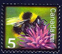 Canadian stamp with the polaris bumblebee