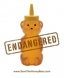 Endangered honey bear. Why honey is sold in bear shaped containers?